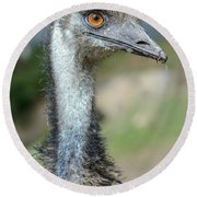 Emu 2 Round Beach Towel by Werner Padarin
