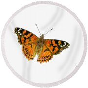 West Coast Painted Lady Butterfly  Round Beach Towel