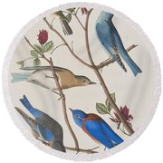 Western Blue-bird Round Beach Towel