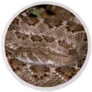 Western Diamondback Rattlesnake Round Beach Towel