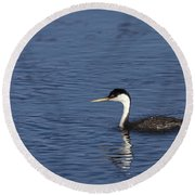 Western Grebe In Late Afternoon Light Round Beach Towel