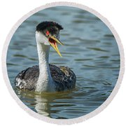 Western Grebe Round Beach Towel by Tam Ryan