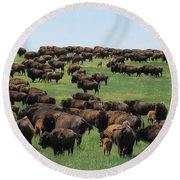 Western Kansas Buffalo Herd Round Beach Towel