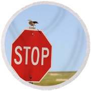 Western Meadowlark Singing On Top Of A Stop Sign Round Beach Towel by Louise Heusinkveld