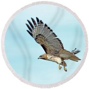 Western Red-tailed Hawk Round Beach Towel