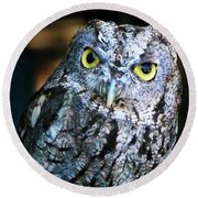 Round Beach Towel featuring the photograph Western Screech Owl by Anthony Jones