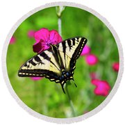 Western Tiger Swallowtail Butterfly Round Beach Towel