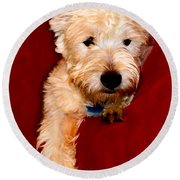 Westie Boy Round Beach Towel