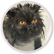 Wet Cat Round Beach Towel
