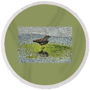 Wet Feathers Round Beach Towel
