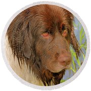 Round Beach Towel featuring the photograph Wet Newfie by Debbie Stahre