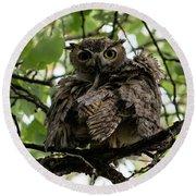 Wet Owl Round Beach Towel