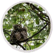 Wet Owl - Wide View Round Beach Towel