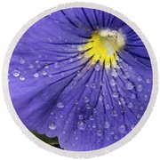 Round Beach Towel featuring the photograph Wet Pansy by Jean Noren