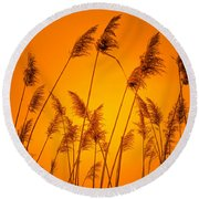 Wetland Sunset Round Beach Towel