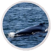 Whale Approaches Round Beach Towel