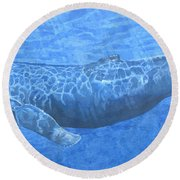 Whale In Surface Light Round Beach Towel