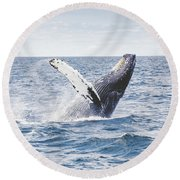 Whale Tail Round Beach Towel by Happy Home Artistry