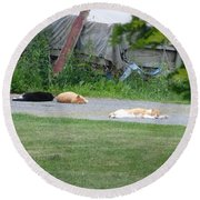 What A Day Round Beach Towel by Donald C Morgan