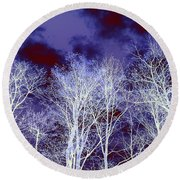 Round Beach Towel featuring the photograph What Lies Above by Shana Rowe Jackson