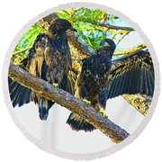 Round Beach Towel featuring the photograph What Shall I Say by Deborah Benoit