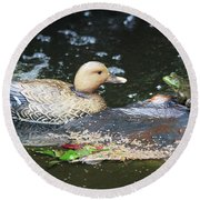 Round Beach Towel featuring the photograph What's Up Duck? by Trina Ansel