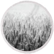 Wheat Field Round Beach Towel by Peter Scott