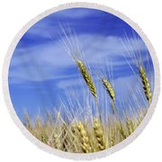 Wheat Trio Round Beach Towel by Keith Armstrong