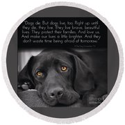 Round Beach Towel featuring the digital art When Dogs Die by Kathy Tarochione