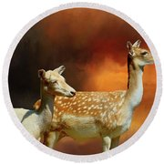 Two Deer At Sunset Round Beach Towel