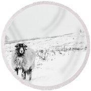 Which Way Is South? Round Beach Towel