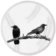 Which Way Two Black Crows On White Square Round Beach Towel