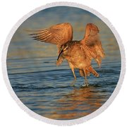 Whimbrel Colors Round Beach Towel