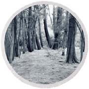 Round Beach Towel featuring the photograph Whispering Forest by Wayne Sherriff