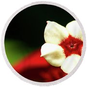 White And Red Flower Round Beach Towel