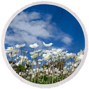 White Anemones At Blue Sky Round Beach Towel