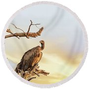 White-backed Vulture Round Beach Towel