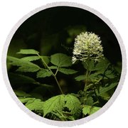 White Baneberry Round Beach Towel