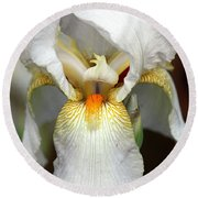 White Bearded Iris 2 Round Beach Towel by Sheila Brown