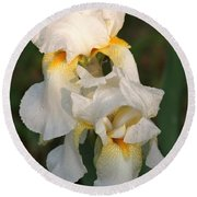 Round Beach Towel featuring the photograph Two White Bearded Iris At Dusk by Sheila Brown