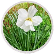 White Beauty Round Beach Towel by Dee Flouton