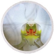 Round Beach Towel featuring the photograph White Beauty by Lehua Pekelo-Stearns
