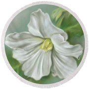 White Begonia Flower Round Beach Towel
