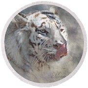 White Bengal Tiger Round Beach Towel