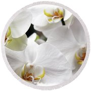 White Big Orchids  Round Beach Towel