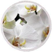 White Big Orchids  Round Beach Towel
