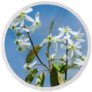 Round Beach Towel featuring the photograph White Blossom by Cristina Stefan