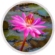White City Lily Round Beach Towel by Tom Claud