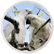 White Cockatoos Round Beach Towel by Kaye Menner