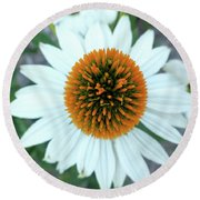 White Cone Flower Round Beach Towel